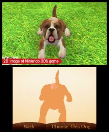 Nintendogs-+-Cats_25
