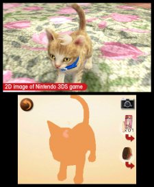 Nintendogs-+-Cats_27