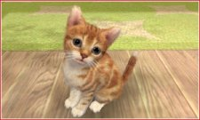 Nintendogs-+-Cats_2