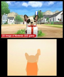 Nintendogs-+-Cats_30