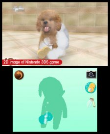Nintendogs-+-Cats_33