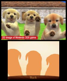 Nintendogs-+-Cats_35