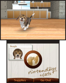 Nintendogs+cats 3DS screenshots captures 05