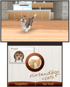 Nintendogs-+-Cats_5