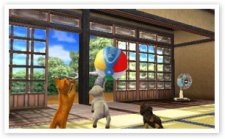 Nintendogs-+-Cats_9