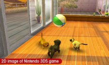 nintendogs-cats-screenshot-2011-01-19-00