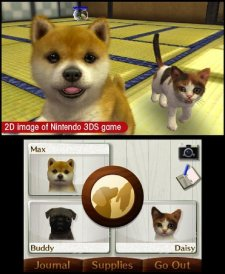 nintendogs-cats-screenshot-2011-01-19-05