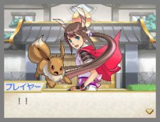 Nobunaga-Ambition-X-Pokémon_14-01-2012_screenshot-22