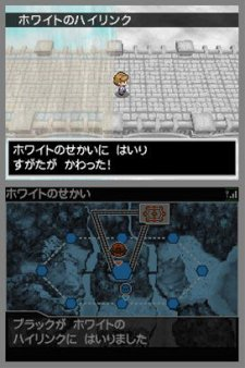 Pokemon-Blanc-Noir_17