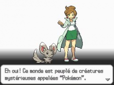 Pokemon-Blanc-Noir_20