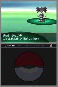 Pokemon-Blanc-Noir_24