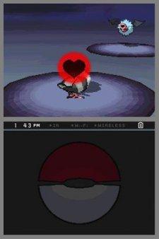 Pokemon-Blanc-Noir_2