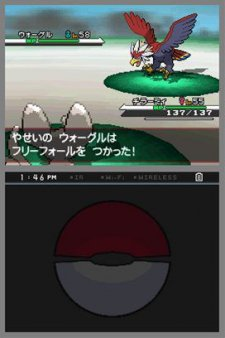 Pokemon-Blanc-Noir_6