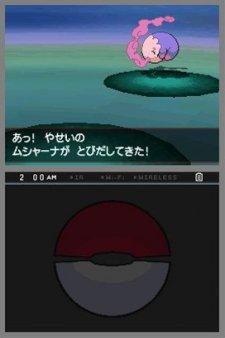 Pokemon-Blanc-Noir_7