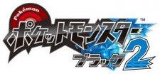 Pokémon-Blanc-Noir-Version-Blanche-Noire-2_26-02-2012_art-2