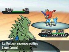 Pokémon-Blanc-Noir-Version-Blanche-Noire-2_31-08-2012_Keldeo-1