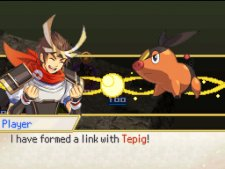 Pokemon-Conquest_04-04-2012_screenshot-2