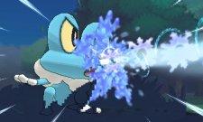 Pokemon-X-Y_14-01-2013_screenshot (7)