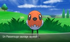 Pokemon-X-Y_14-05-2013_ (20)