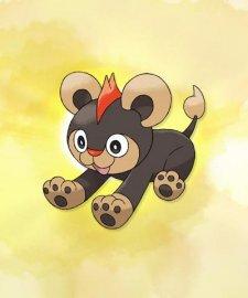Pokemon-X-Y_14-06-2013_art-5
