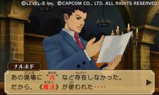 Professor-Layon-vs-Ace-Attorney_13-09-2012_screenshot-2