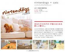 Promo-3DS_4