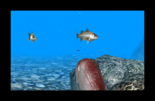Reel-Fishing-Paradise-3D_3