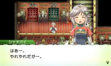Rune-Factory-4_13-04-2012_screenshot-20