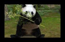 screenshot-capture-image-zoo-mania-nintendo-3ds-01