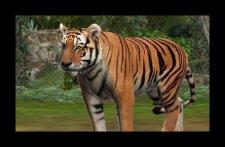 screenshot-capture-image-zoo-mania-nintendo-3ds-02