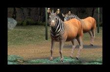 screenshot-capture-image-zoo-mania-nintendo-3ds-05