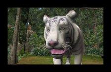 screenshot-capture-image-zoo-mania-nintendo-3ds-06