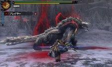 screenshot-monster-hunter-tri-g-nintendo-3ds-05