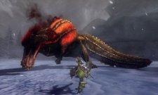 screenshot-monster-hunter-tri-g-nintendo-3ds-16