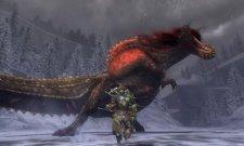 screenshot-monster-hunter-tri-g-nintendo-3ds-17