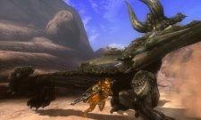 screenshots-captures-images-monster-hunter-tri-g-nintendo-3ds-02