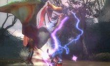 screenshots-captures-images-monster-hunter-tri-g-nintendo-3ds-07