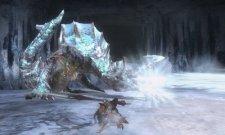 screenshots-captures-images-monster-hunter-tri-g-nintendo-3ds-08